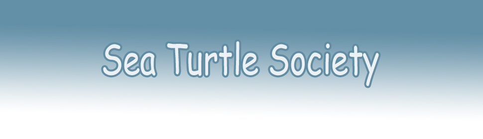 International Sea Turtle Society